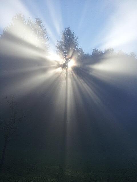 Reinkarnation – Die Wiedergeburt