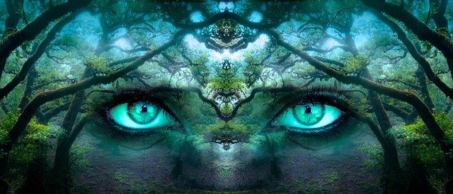 Bedeutung des Bewusstseins. Augen im Wald.